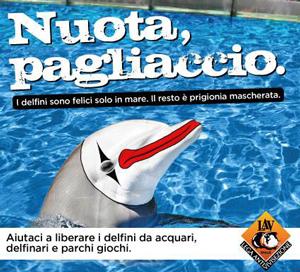 delfino-LAV