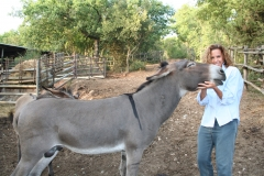 Con i miei animali