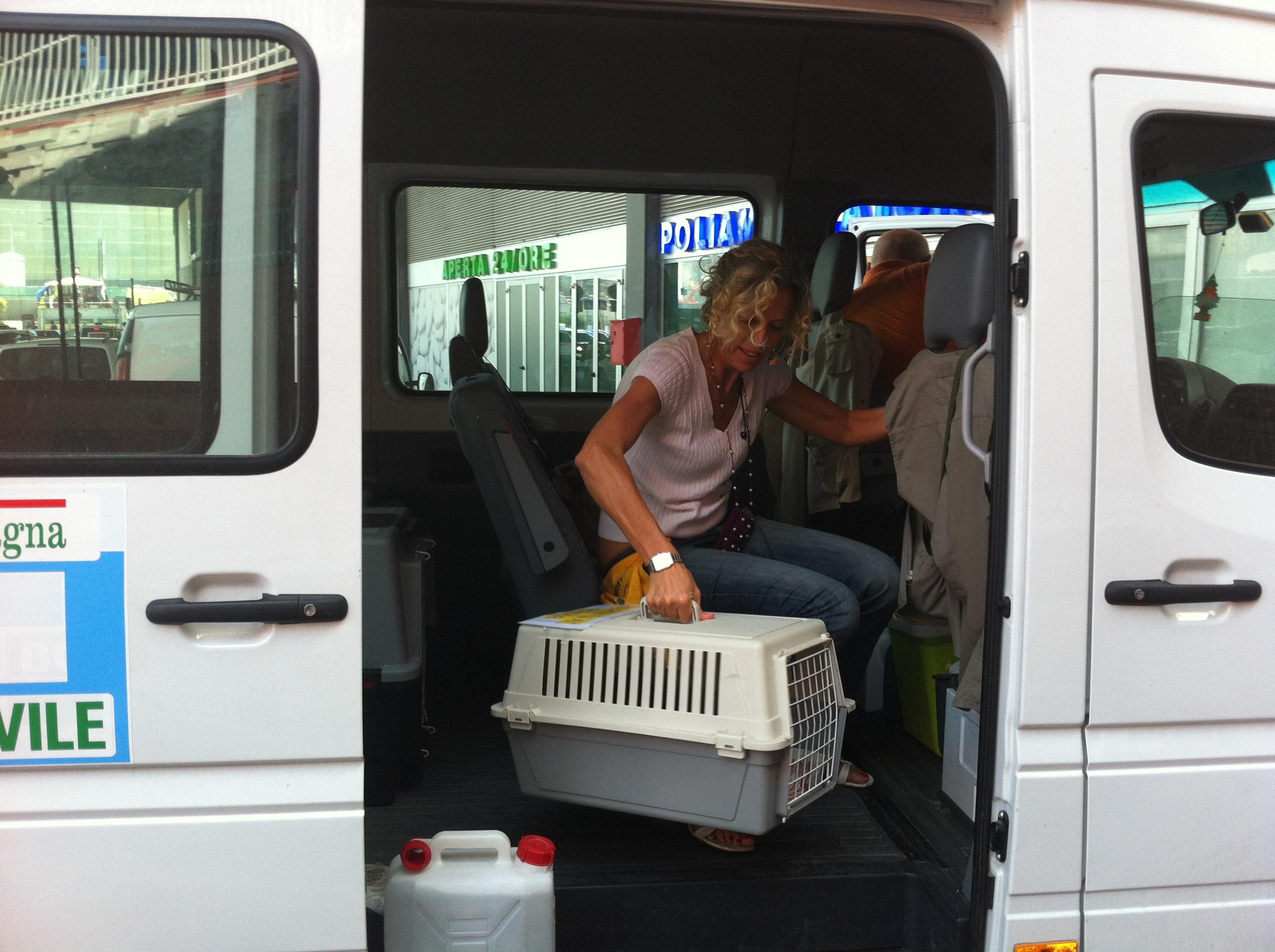 Libera arriva a Roma
