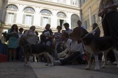 cirinn-beagle-provincia-roma61-1024x683