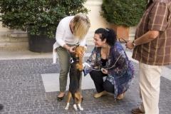 cirinn-beagle-provincia-roma73-1024x683