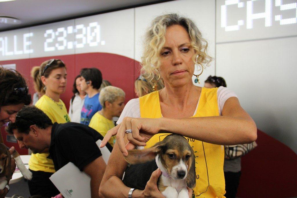 Monica Cirinnà con Libera - beagle di GreenHill